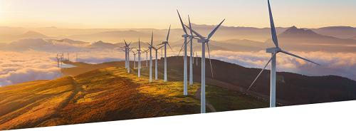 Cómo reducir la huella de carbono de tu evento y ayudar al medio ambiente